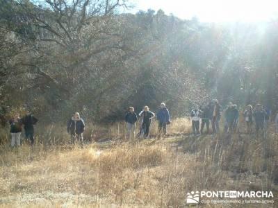 Cañón del Río Dulce y Sigüenza; caminatas por madrid; excursiones de un día desde madrid